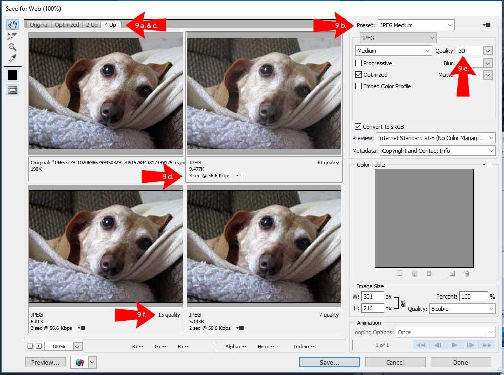 Screenshop of Adobe Photoshop Save for Web