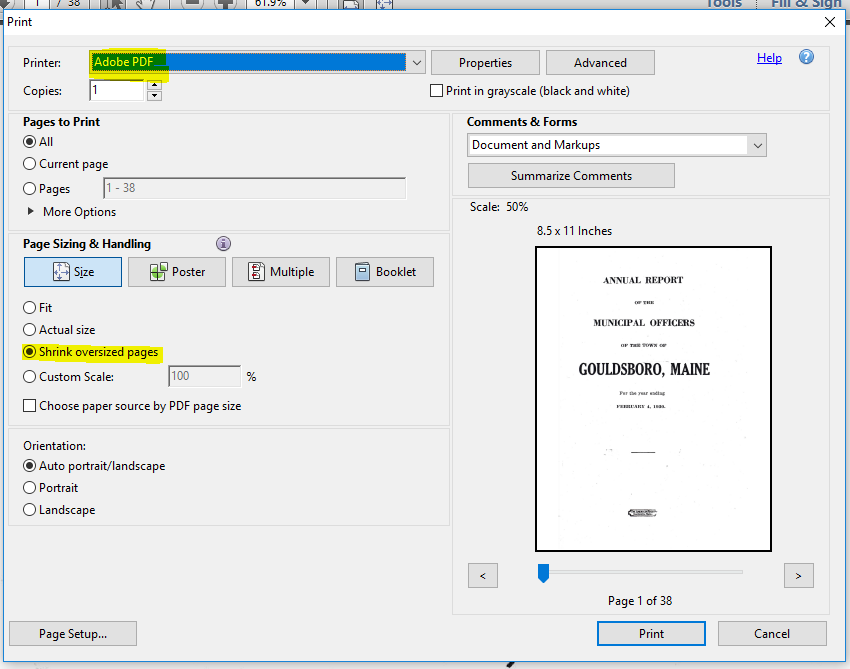 Print to PDF Dialog Box
